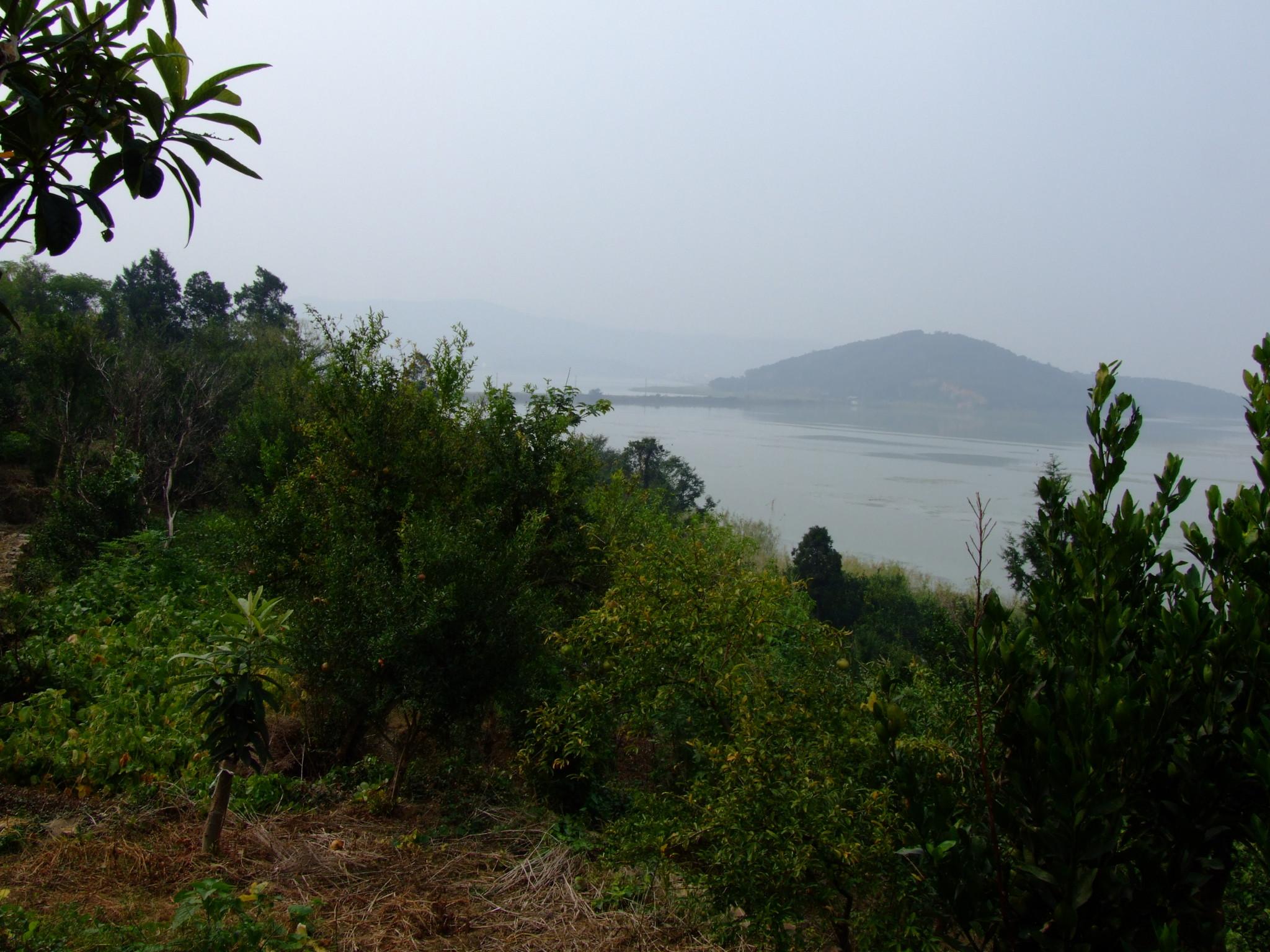 苏州太湖三山岛---春天自驾游记